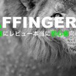 【AFFINGER5】アフィンガー5「正直に」レビューします【本当に初心者向け?】